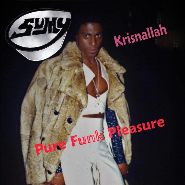 Pure Funk Pleasure