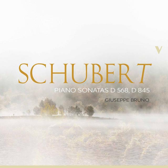 Schubert: Piano Sonatas, D. 568 & 845