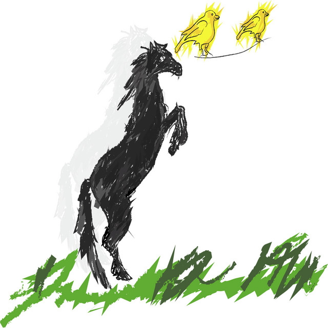 Dark Horses and Yellow Canaries
