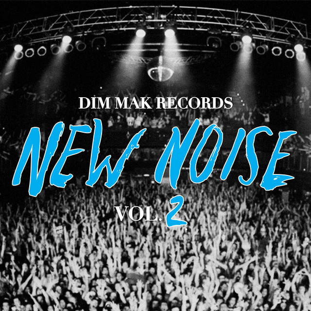 Dim Mak Records New Noise Vol. 2