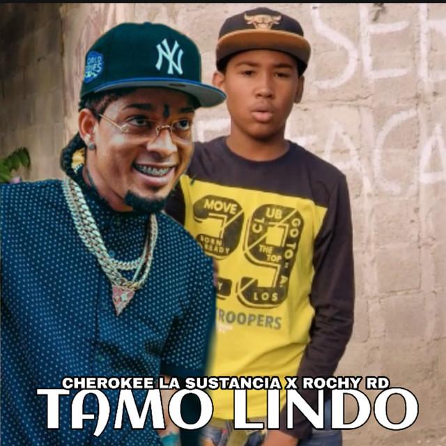 Tamo Lindo (Cover)