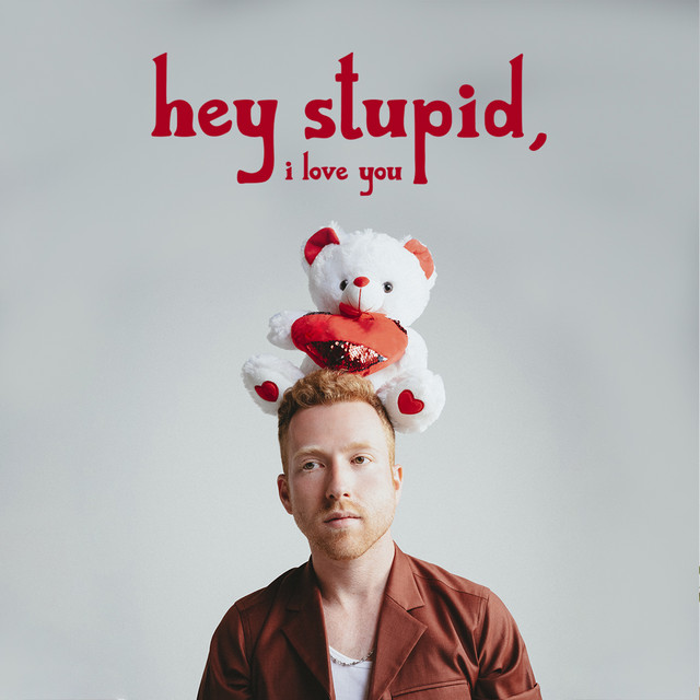 Hey Stupid, I Love You cover art