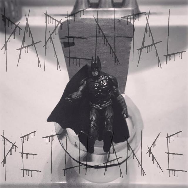 Batman on the Potty by Parental Petulance