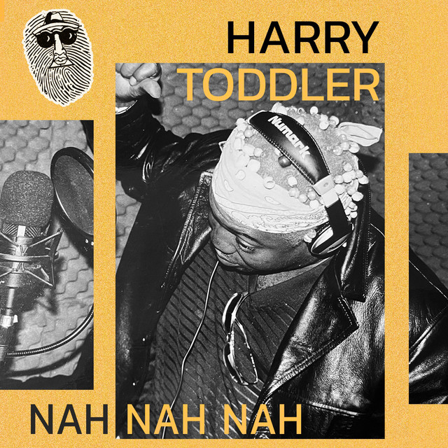Harry Toddler