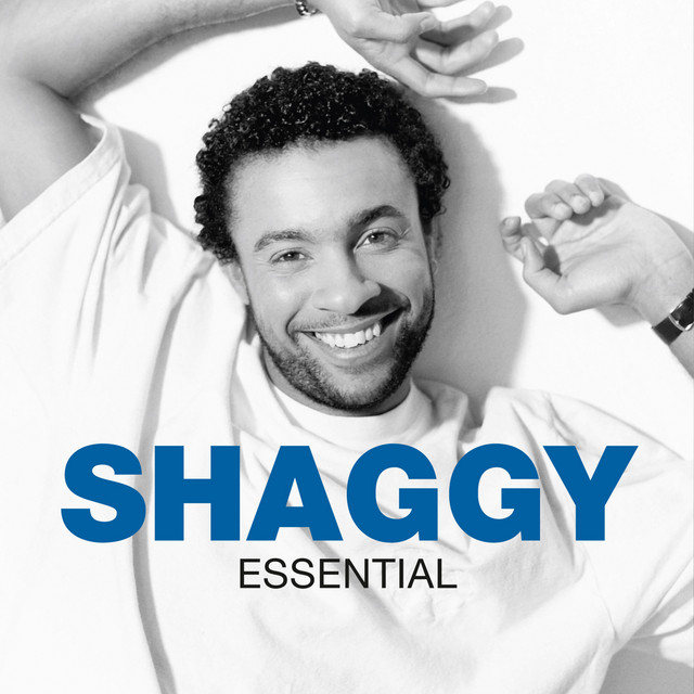 In The Summertime Song By Shaggy Rayvon Spotify