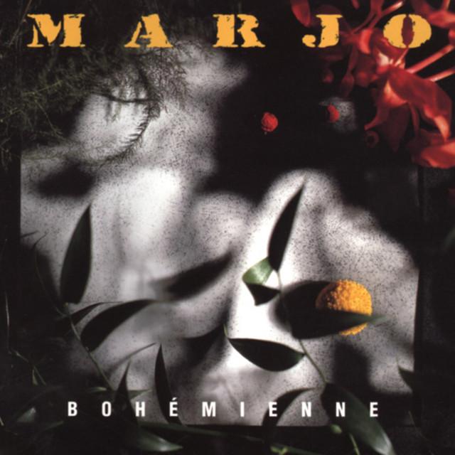 S'il fallait (1995) album cover