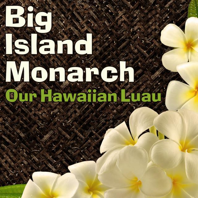 Our Hawaiian Luau