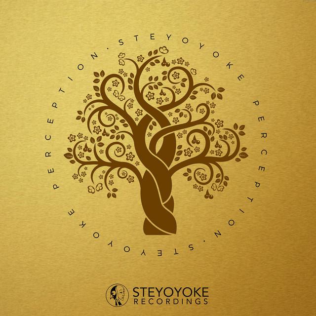 Steyoyoke Perception, Vol. 04