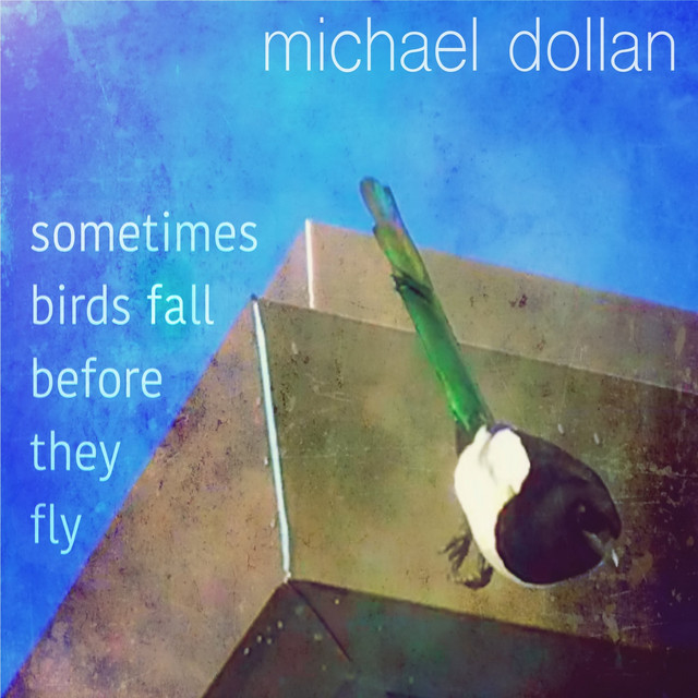 Sometimes Birds Fall Before They Fly