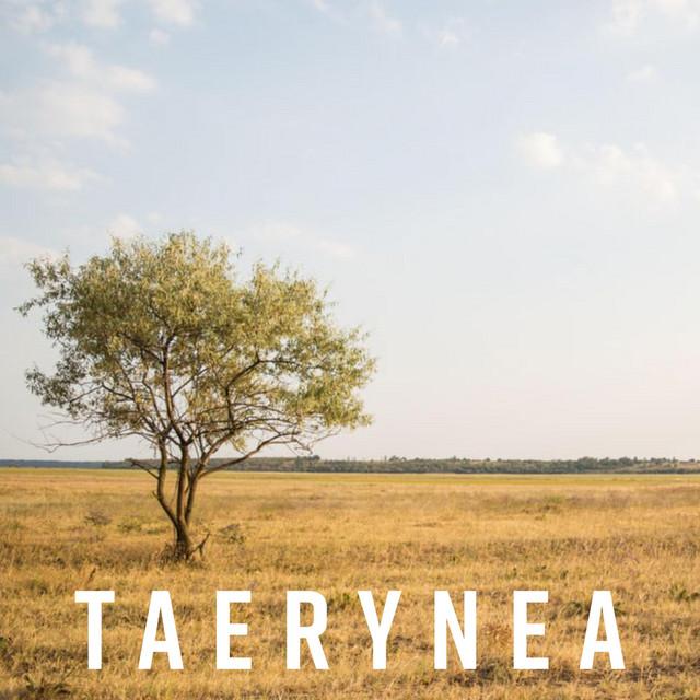 Taerynea