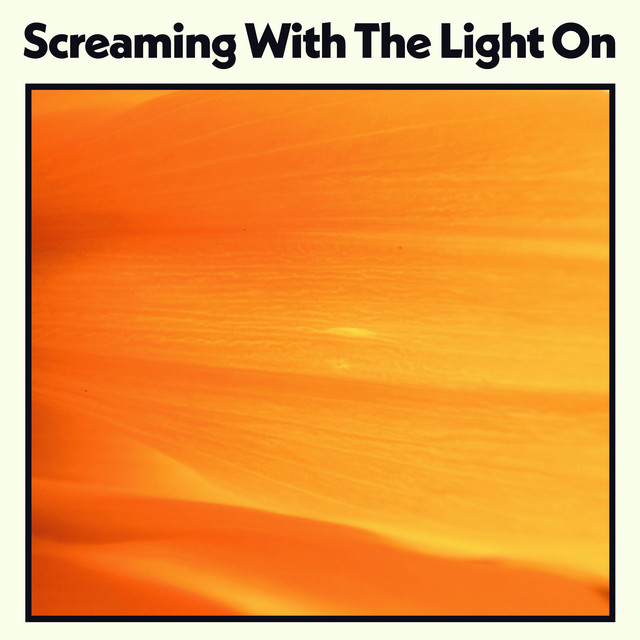 Screaming With the Light On