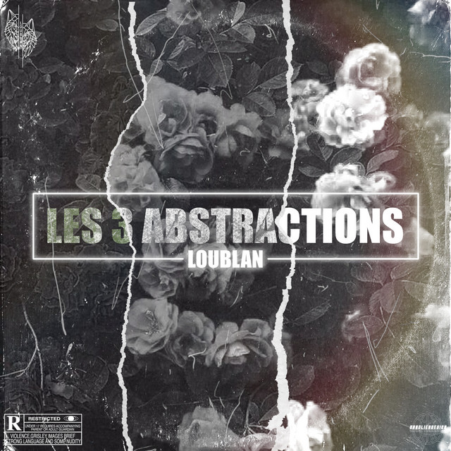 Les 3 Abstractions Image