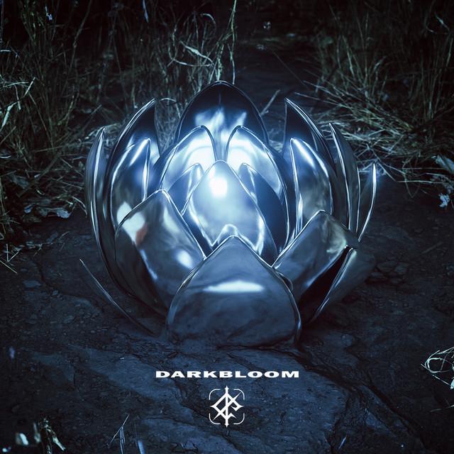 Darkbloom album cover