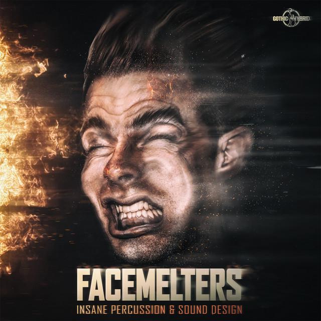 FaceMelters - Insane Percussion & Sound Design