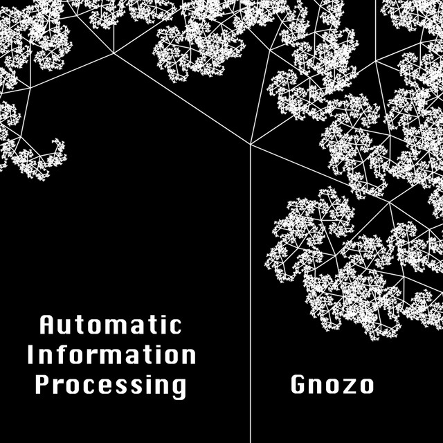 Automatic Information Processing
