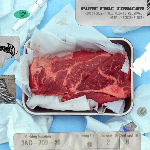 PURE FIRE - Album by TORIENA | Spotify