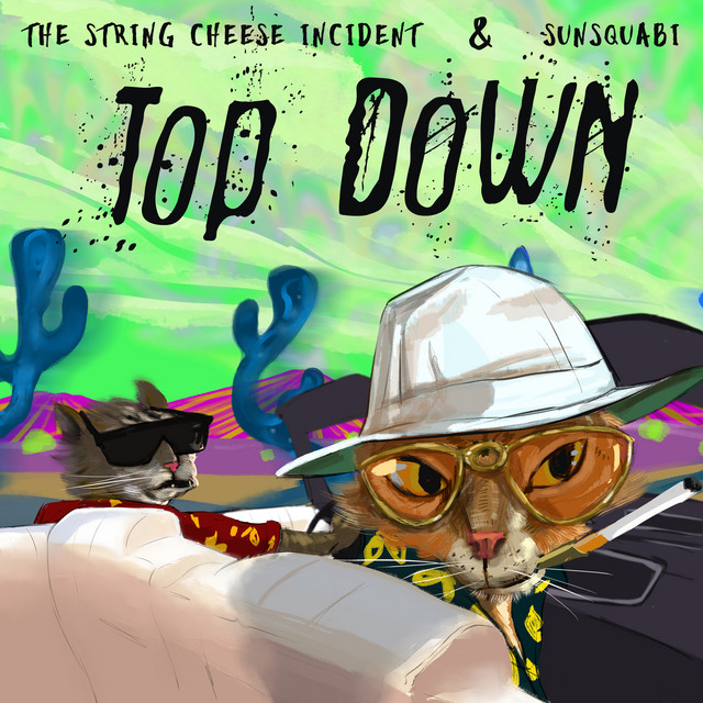 """""""Top Down"""" Image"""