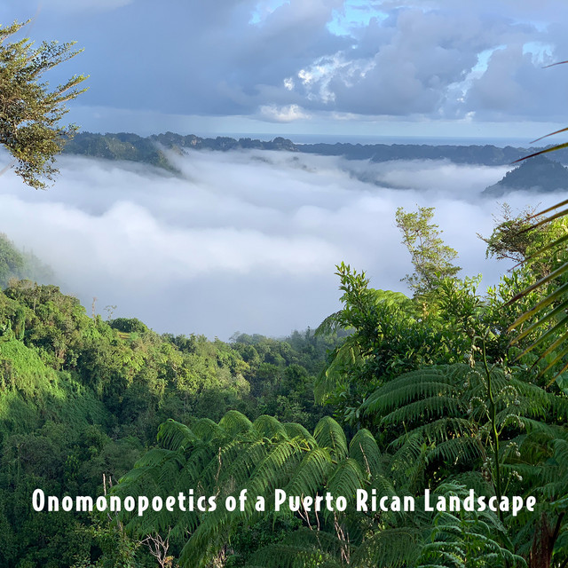 Onomonopoetics of a Puerto Rican Landscape