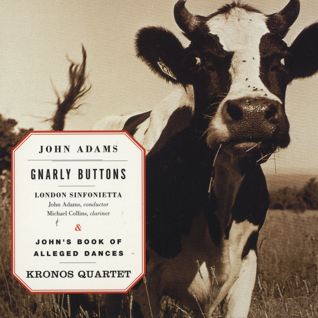 Gnarly Buttons/John's Book Of Alleged Dances
