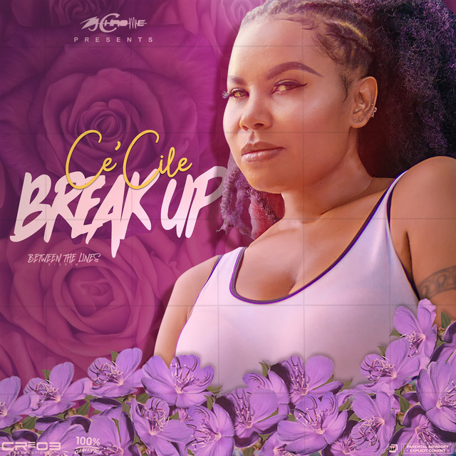 Break up song pink Just Give