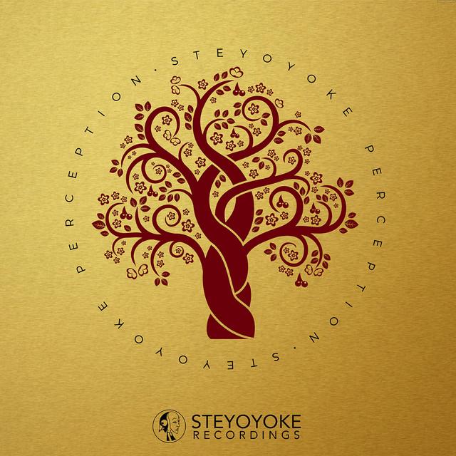 Steyoyoke Perception, Vol. 03
