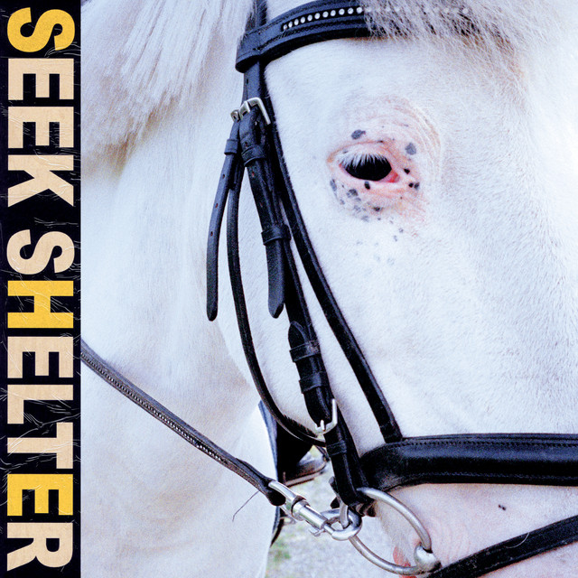 Seek Shelter - Album by Iceage | Spotify