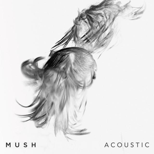 Mush (Acoustic)