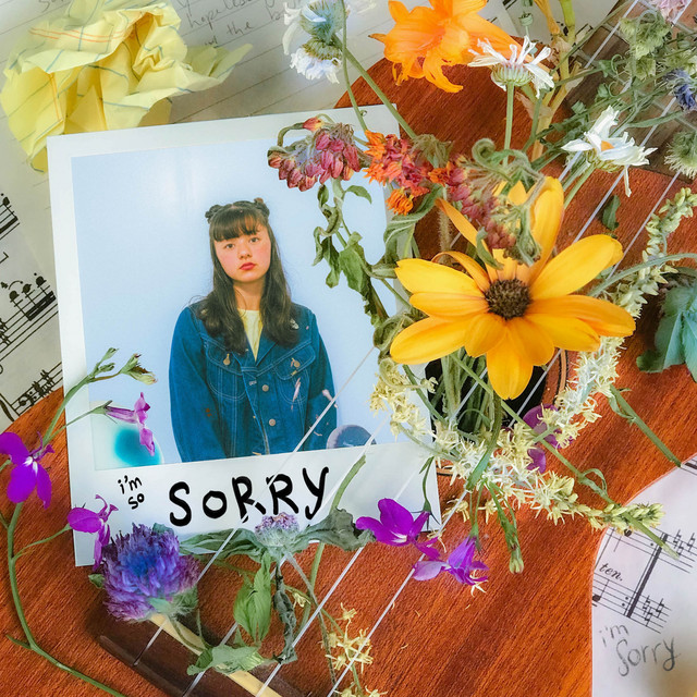 the sorry song Image