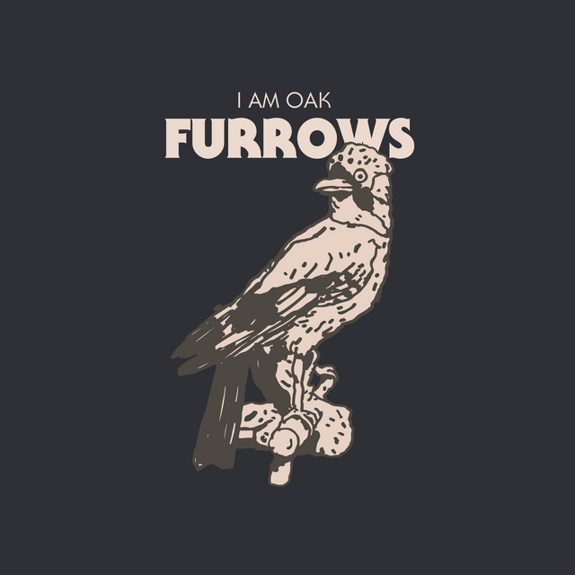 Furrows Image