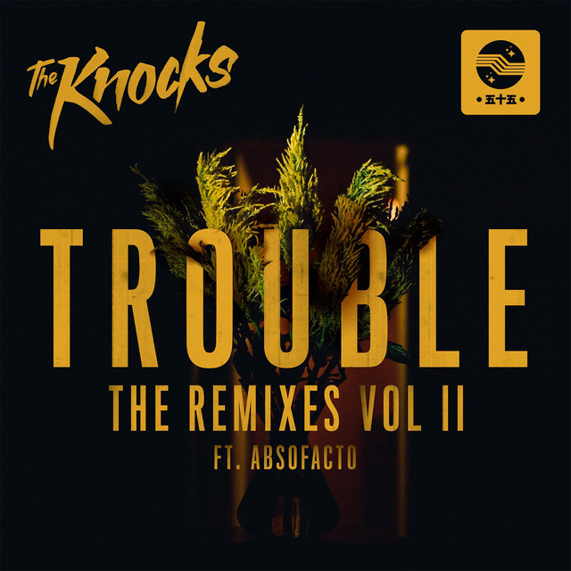 TROUBLE (feat. Absofacto) - LIONE Remix