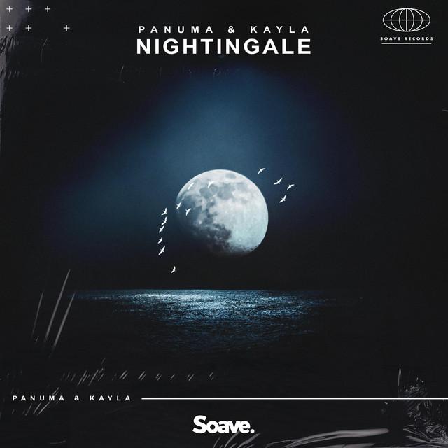 Nightingale Image