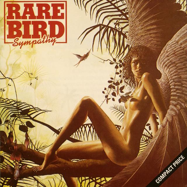 Image Rare Bird