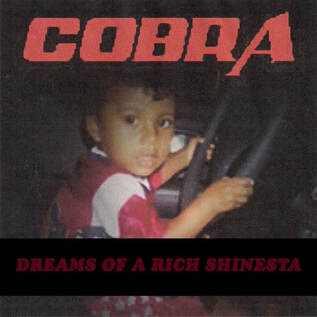 Dreams of a Rich Shinesta