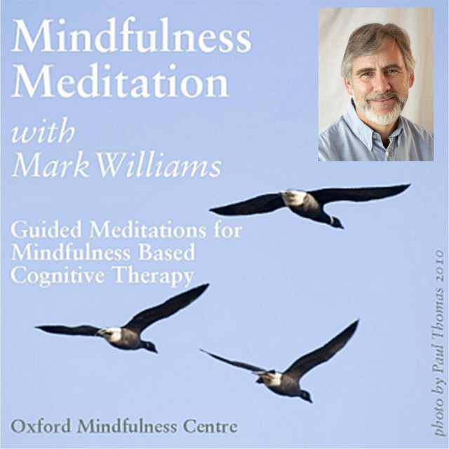 Mindfulness Space