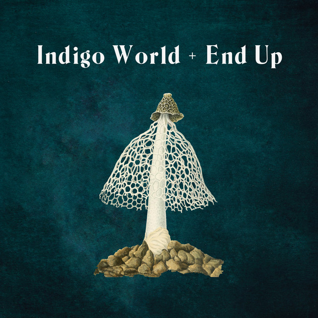 Indigo World / End Up Image
