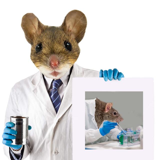 Lab Rat 2