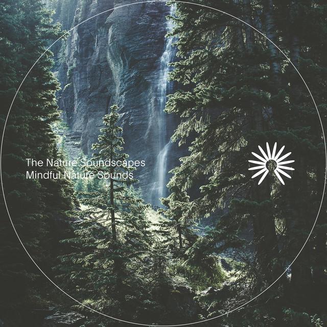 The Nature Soundscapes