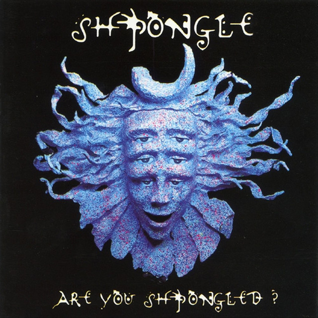 Cover art for Divine Moments Of Truth by Shpongle