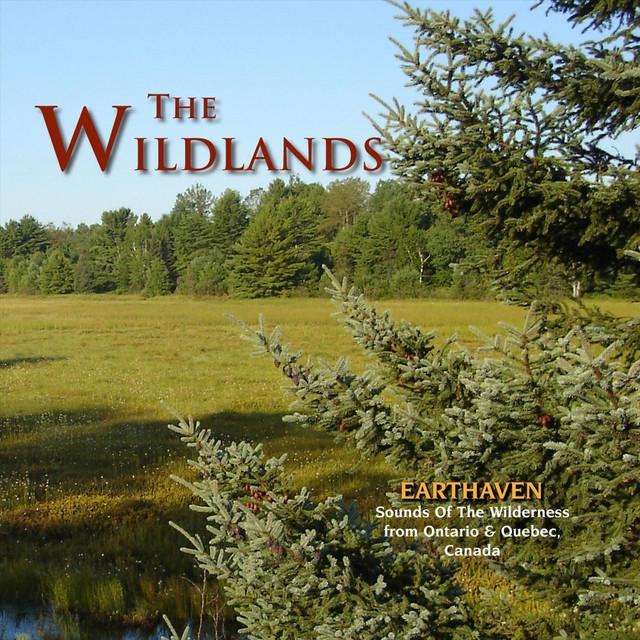 The Wildlands: Earthaven