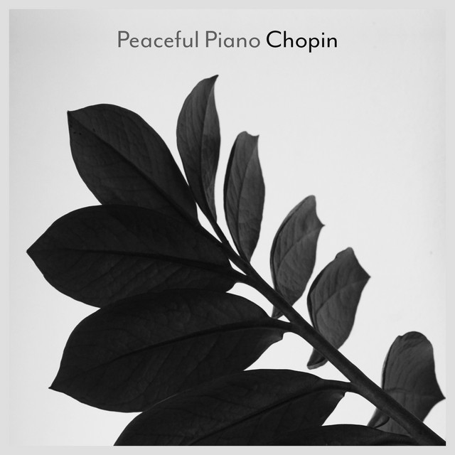Peaceful Piano - Chopin