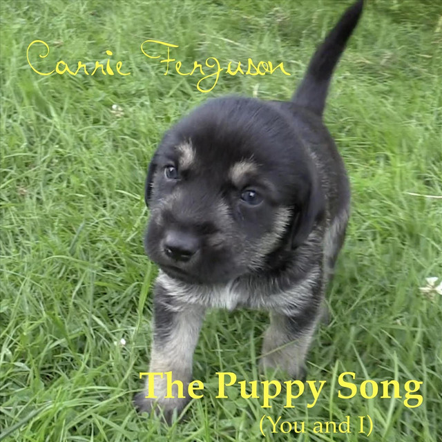 The Puppy Song (You and I) by Carrie Ferguson