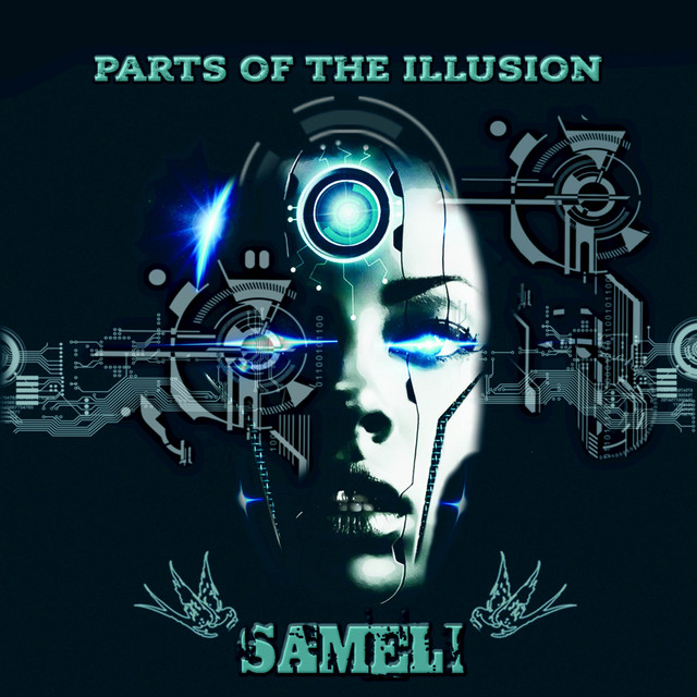 Parts of the Illusion Image