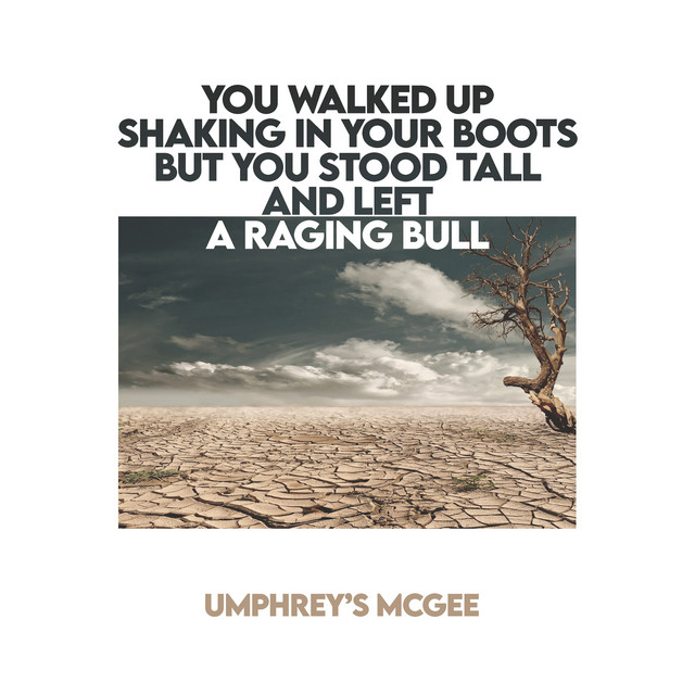 YOU WALKED UP SHAKING IN YOUR BOOTS BUT YOU STOOD TALL AND LEFT A RAGING BULL