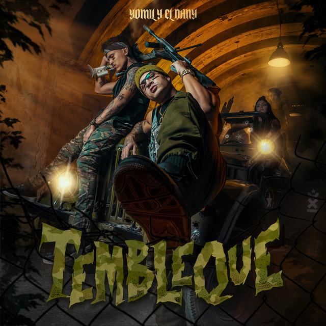 Yomil y El Dany album cover