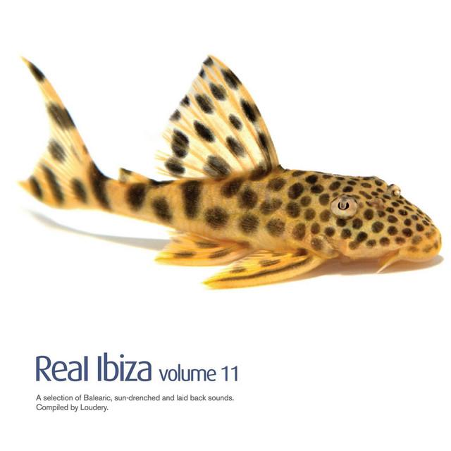 Real Ibiza Vol 11