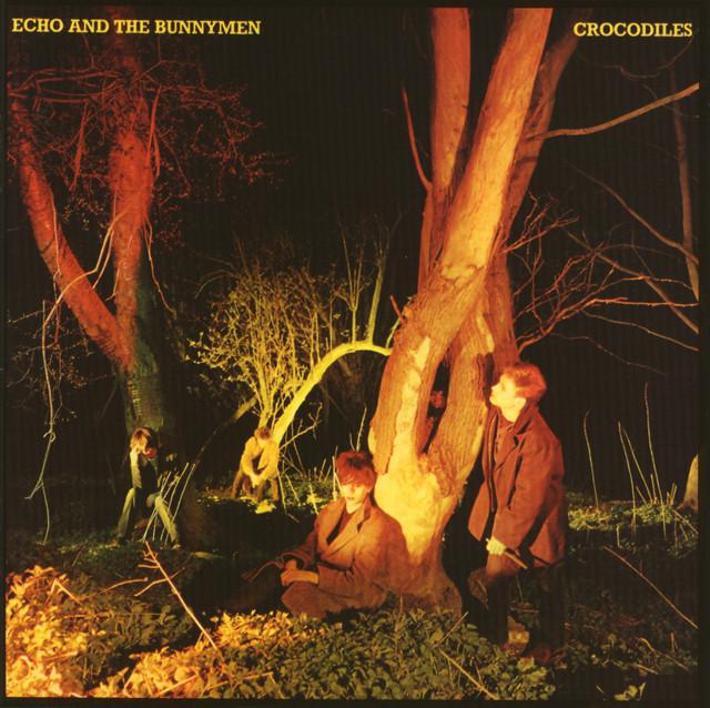 Echo And The Bunnymen  Crocodiles :Replay