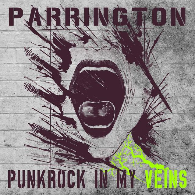 Punkrock in My Veins