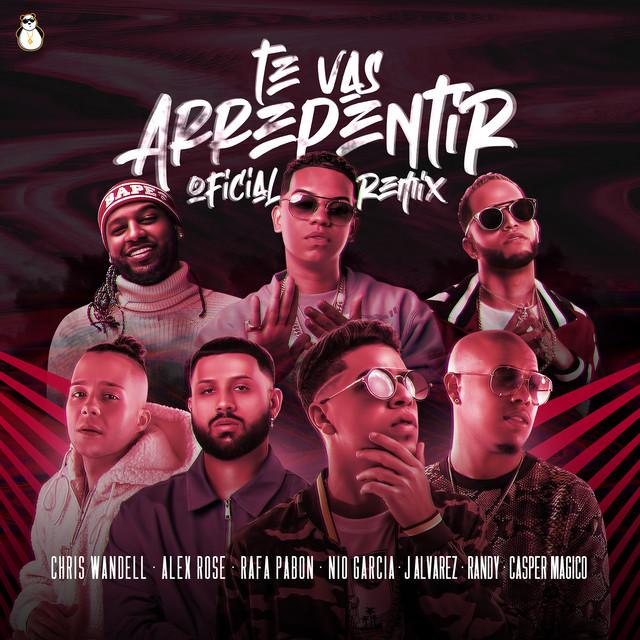 Te Vas Arrepentir - Remix