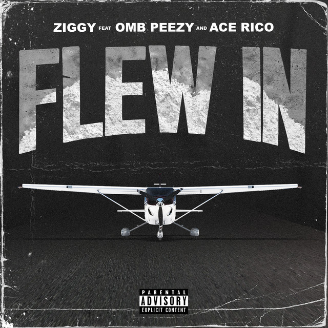 ZIGGY & OMB Peezy & Ace Rico - Flew In