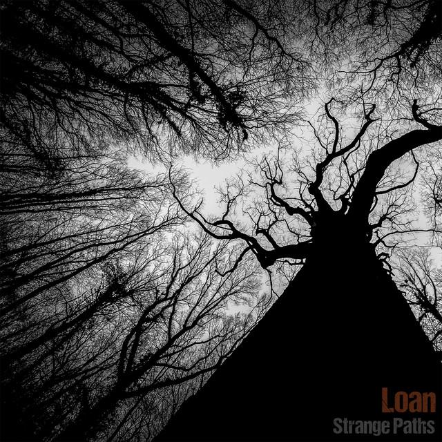 Strange Paths Image